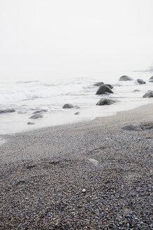 Germany, Mecklenburg-Western Pomerania, Ruegen, waterside at Cape Arkona - MJF000922