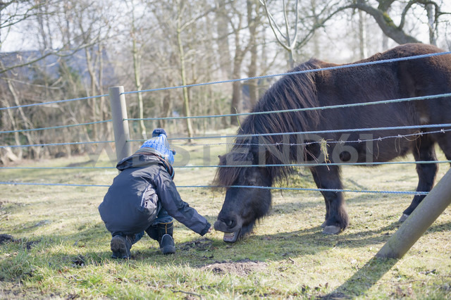 Germany, Mecklenburg-Western Pomerania, Ruegen, little boy feeding pony - MJ000933 - Jana Mänz/Westend61