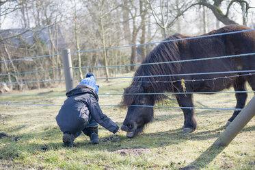 Germany, Mecklenburg-Western Pomerania, Ruegen, little boy feeding pony - MJ000933