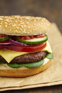 Cheeseburger, close-up - ECF000445