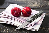 Two Chinese plums (Prunus salicina) with kitchen towel and knife on dark wooden table - MAEF008224