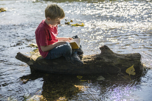 Boy sitting on dead wood at brook reading a book - SARF000363