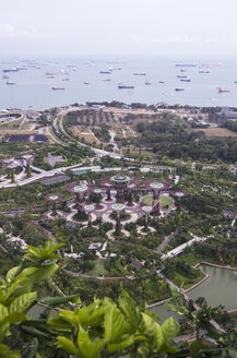 Asia, Singapore, Marina Bay, Gardens by the Bay, Supertrees - THAF000157