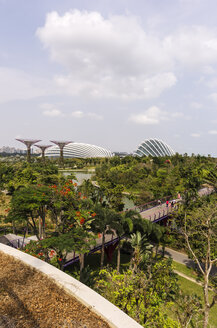 Asia, Singapore, Marina Bay, Gardens by the Bay, Supertrees in the park - THA000163
