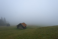 Germany, Bavaria, Werdenfelser Land, Hay barn in fog - RJF000034
