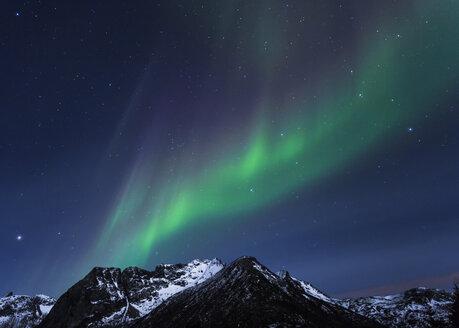 Polar lights (aurora borealis) on Gimsoy, Lofoten, Norway - STSF000351