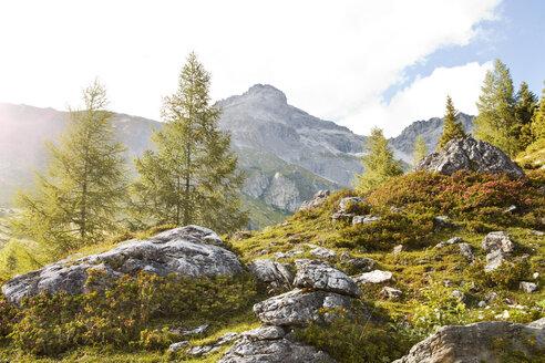 Austria, Lungau, stones in alpine landscape - KVF000038