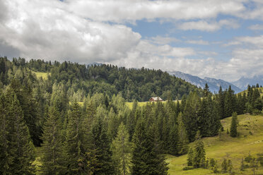 Austria, Lungau, forest and mountains - KVF000041