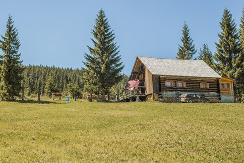 Austria, Gosau, wooden house in alpine meadow - KVF000046