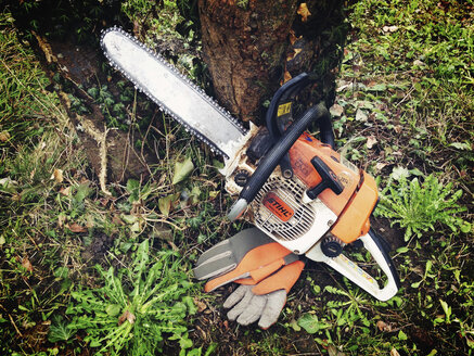 Chainsaw with gloves in front of tree, Konstanz, Baden-Wuerttemberg, Germany - JED000159