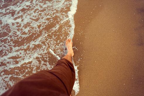 New Zealand, New Chums Beach, beach walk - WV000509