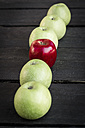 Red apple in a row of green apples on dark ground - SARF000398