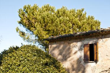 Italy, Tuscany, Volterra, window at a building and tree - KVF000073