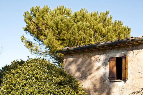 Italy, Tuscany, Volterra, window at a building and tree - KVF000073