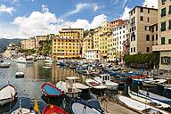 Italy, Liguria, Harbor and town of Camogli - AMF002040