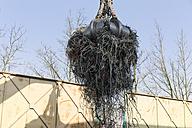 in a scrap metal recycling plant - LAF000834