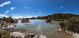 New Zealand, Whakarewarewa, Maori Village, geothermal field - WV000512