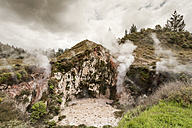New Zealand, Taupo Volcanic Zone, Craters of the Moon, geothermal field - WV000524