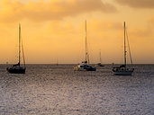 Caribbean, Lesser Antilles, Saint Lucia, Rodney Bay, sailing yachts in the evening - AM002048