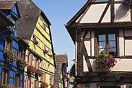 France, Alsace, Haut-Rhin, Riquewhir, historical town center with typical half-timbered houses - GW002714