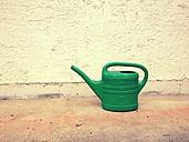 green watering can - RIMF000220