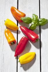 Sweet bell peppers and basil on grey wooden table - CSF021117