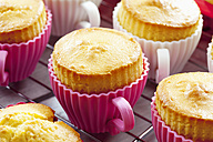 Baking dishes formed like cups with baked cupcakes on cooling grid - CSF021134