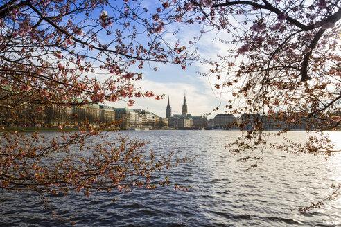 Germany, Hamburg, Inner Alster Lake in spring - KRPF000403