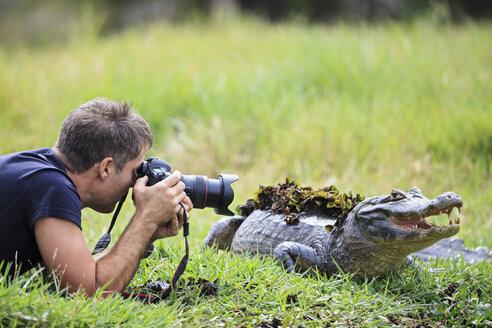 South America, Brasilia, Mato Grosso do Sul, Pantanal, Photographer and a Yacare caiman, Caiman yacare - FOF006439