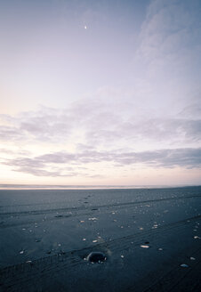 New Zealand, Sunset at Foxton beach - WV000569