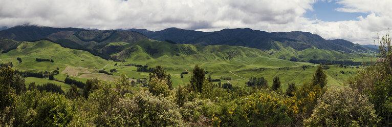 New Zealand, Pukaha Mount Bruce National Wildlife Centre - WV000578