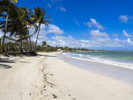 Caribbean, Saint Lucia, Beach at Vieux-Fort - AMF002095