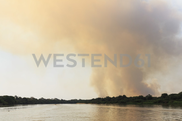 Brazil, Mato Grosso do Sul, Pantanal, Cuiaba River, Forest fire - FOF006456