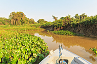 Brazil, Mato Grosso do Sul, Pantanal, Branch of Cuiaba River - FOF006461