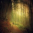 Germany, North Rhine-Westphalia, near Solingen, Jogger running in autumn - DWI000028