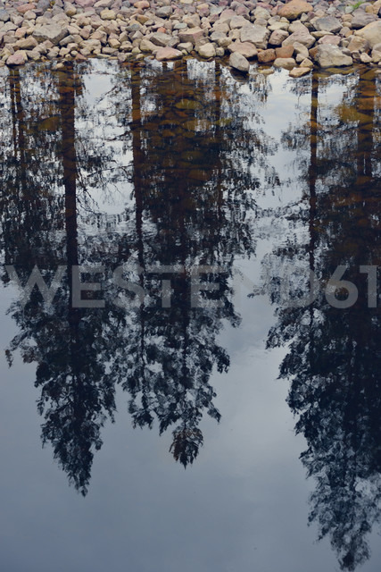 Sweden, Orsa, Reflection of trees in a lake - BR000283