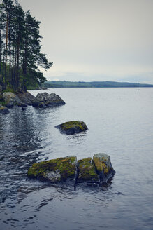 Sweden, Stroemsund, Shore of lake Fangsjoen - BR000391