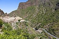 Spain, Canary Islands, Gran Canaria, Mountains at Barranco de Guayadeque - AMF002119