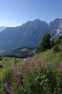Germany, Bavaria, Upper Bavaria, Alps, Berchtesgadener Land, Hoher Goell and Freieck at Rossfeldstrasse - LB000688