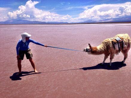 Argentina, Andes, near Tilcara, salt desert - AVSF000137