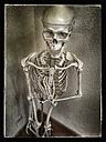 Skeleton, studio - CSF021255