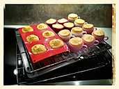 Cup cakes, cup shape, muffins, oven, Studio - CSF021250