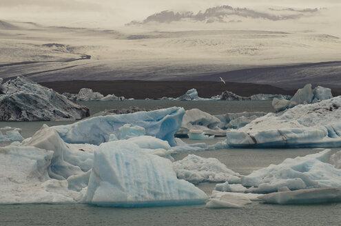 Iceland, Skaftafell National Park, Jokulsarlon glacial lake - STC000010
