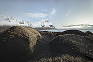 Iceland, Black sandy beach of Stokksnes - STCF000027