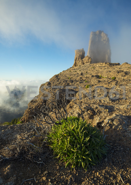 Spain, Canary Islands, Gran Canaria, Roque Nublo - STCF000038
