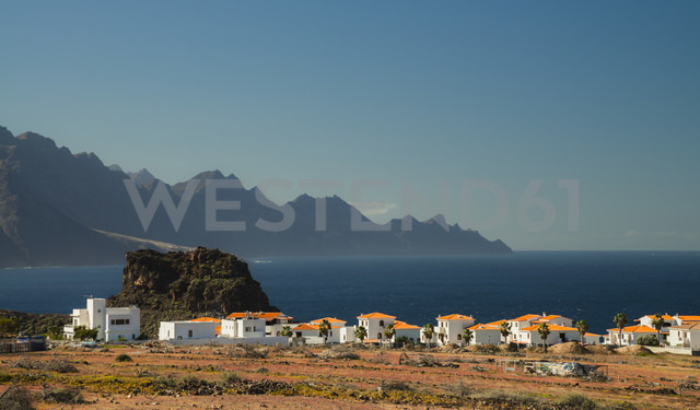 Spain, Canary Islands, Gran Canaria, Colony in the North of the island - STCF000041