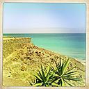 Overlooking the Atlantic Ocean, Fuerteventura, Spain - DRF000649