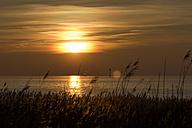 Germany, Lower Saxona, Wremen, North Sea, Sunset over the North Sea - SJF000104