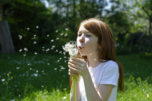 Portrait of girl blowing a blowball in garden - LBF000689