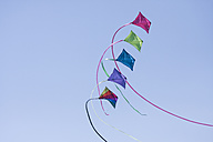 Germany, Hamburg, colourful kites, blue sky - KRPF000436